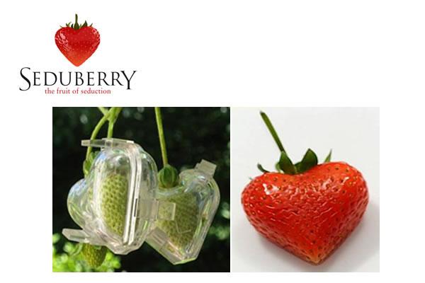 Seduberry – Las Fresas de la Seducción